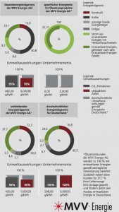 ドイツの電力表示の例(MVV-Energie: https://www.mvv-energie.de/media/media/downloads/privatkunden/preisblaetter/Datenblatt_FUTURA_aktuell.pdf より)